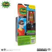 15033-Robin-10