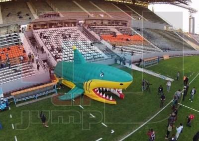 Club Atlético Aldosivi (El Tiburón)
