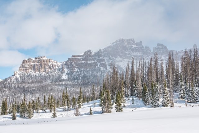 Yellowstone National Park in the winter snow
