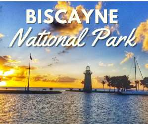 The Guide to Biscayne National Park