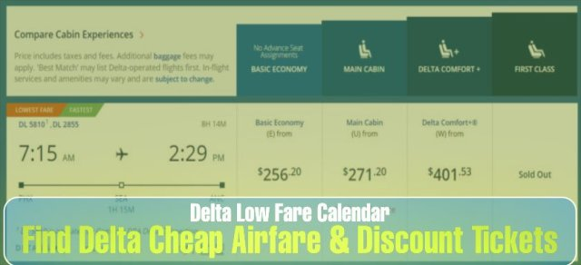 Delta Low Fare Calendar: Find Cheap Airfare & Discounts Tickets – All you need to know