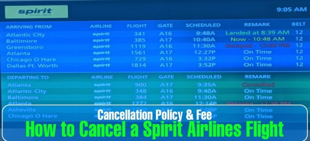 How to Cancel a Spirit Airlines Flight: Cancellation Policy & Fee