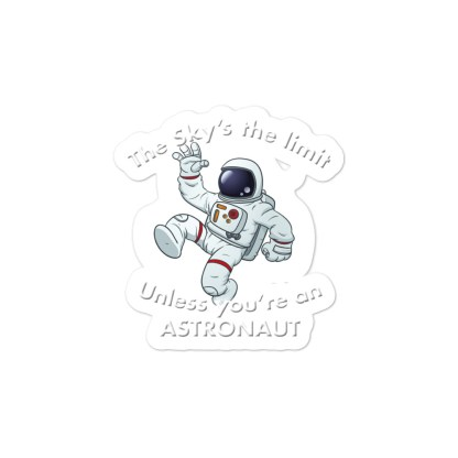 airplaneTees The Sky's the limit sticker - Option 1... Bubble-free 2