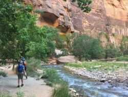 Riverside Walk - Zion National Park