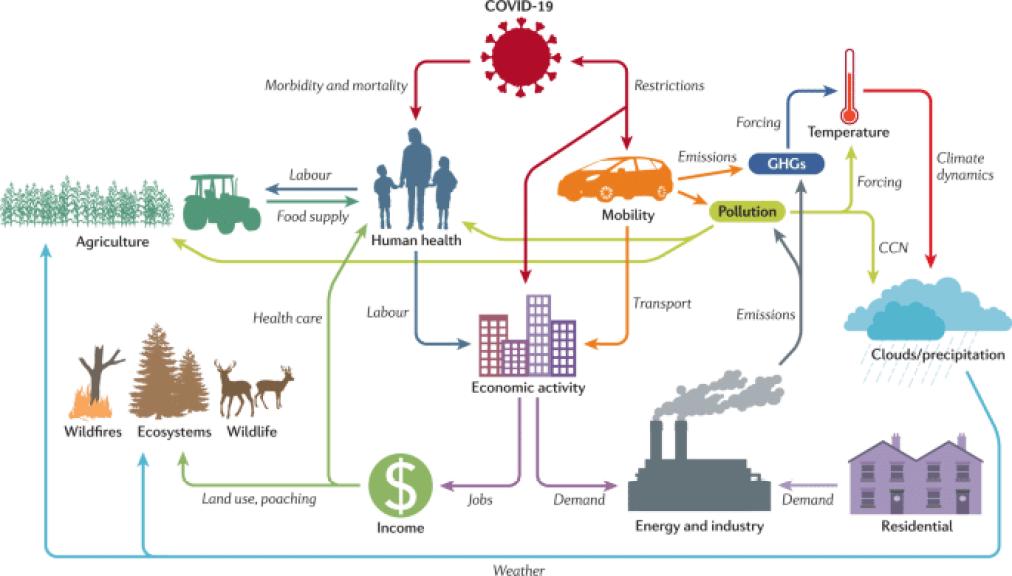 covid-19 impact on environment