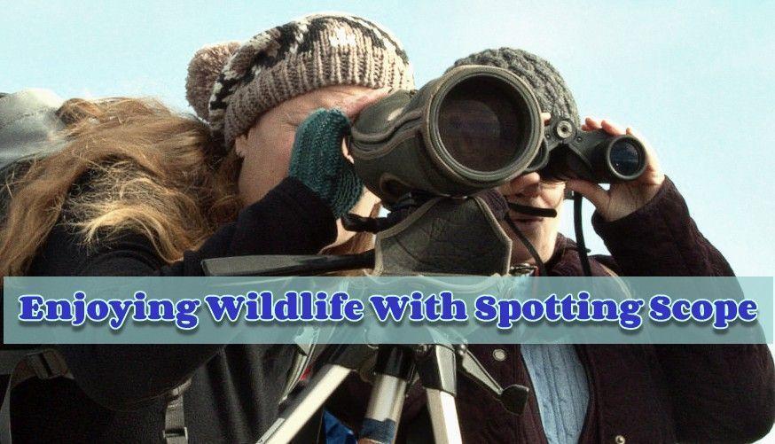 enjoying wildlife with spotting scope