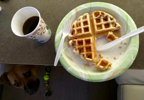 ashland americamps breakfast