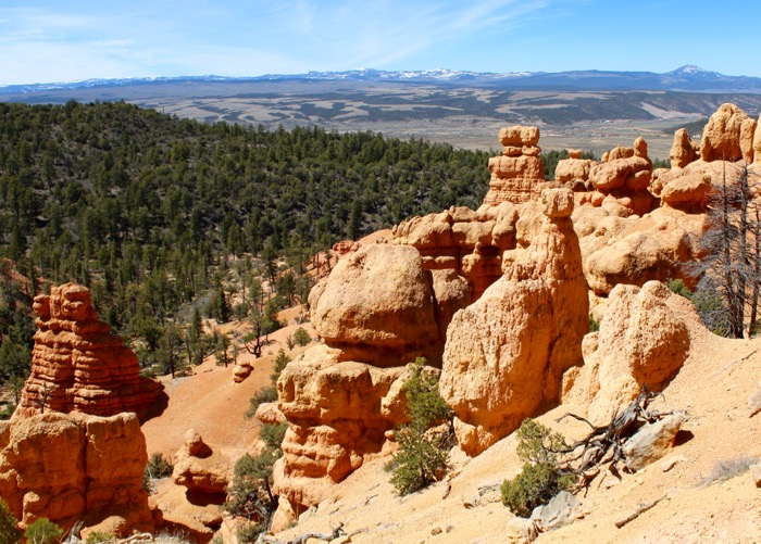 thunder mountain red canyon dixie nf