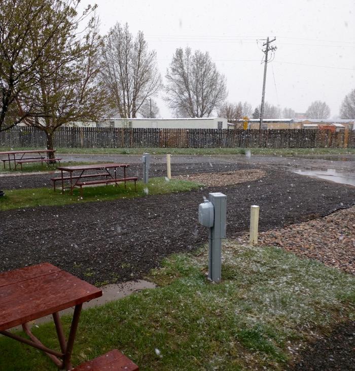 laramie koa snowing