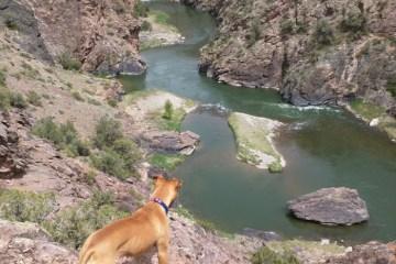 montrose ute trail gunnison river