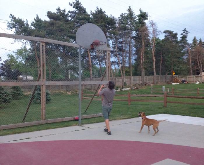 woodchip campground grand rapids basketball