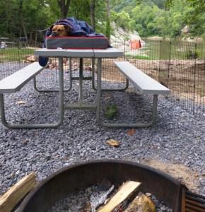 dog sleeping at riverpark campground jonesborough