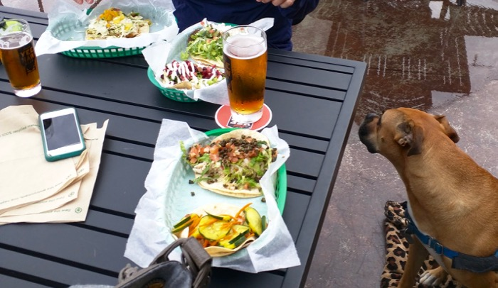white duck tacos and yeehaw beer