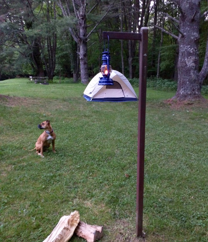 dog and tent and lantern at julian price campground