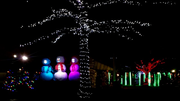 grapevine christmas lights