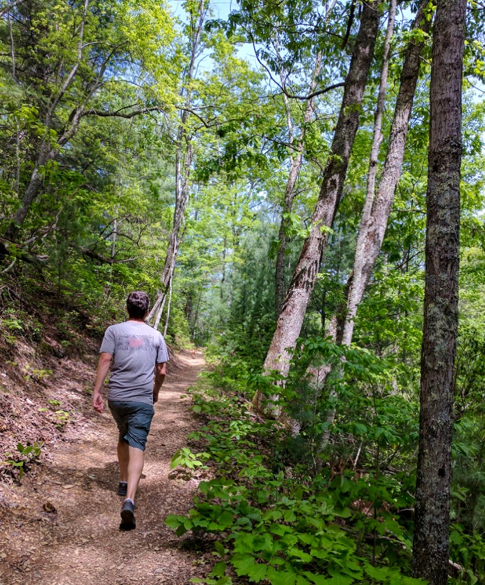 pinnacle mountain tower trail