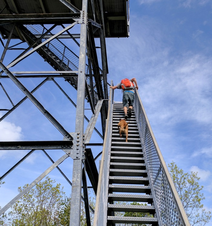 pinnacle mountain fire tower