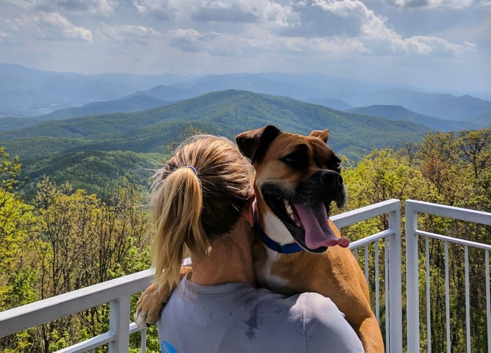 bugsy on pinnacle mountain fire tower