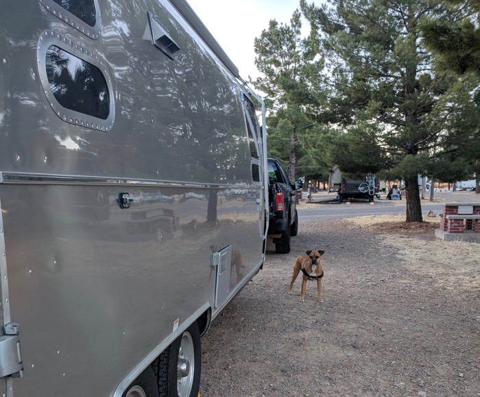 Bugsy and the Airstream at Lost Alaskans