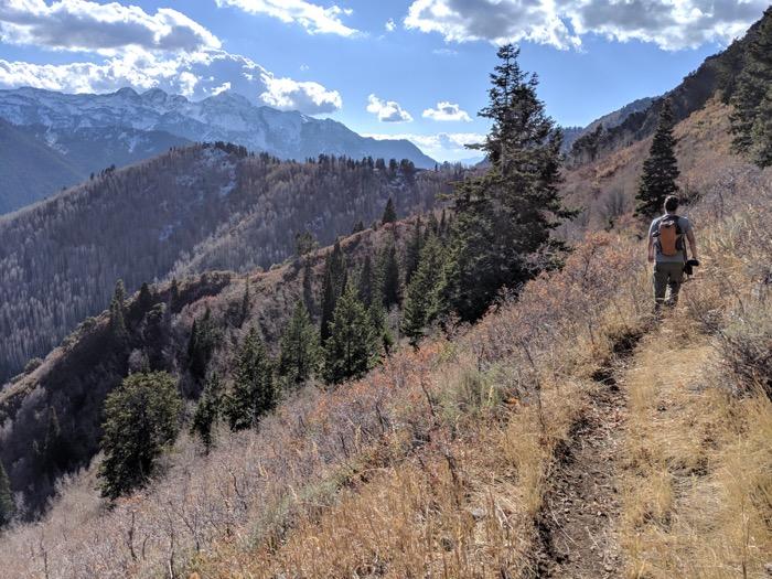 Butler Fork Loop hike