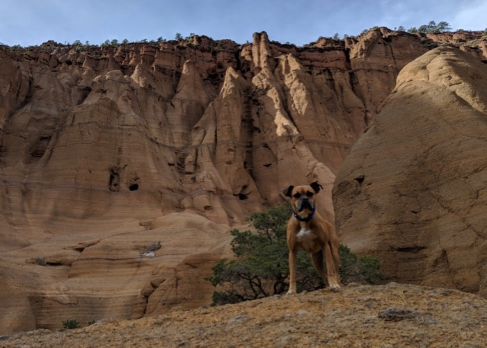 Bugsy and hoodoos at Red Mountain Trail