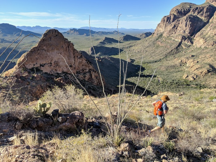 hiking bull pasture trail in organ pipe