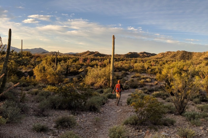 hiking victoria mine trail in organ pipe