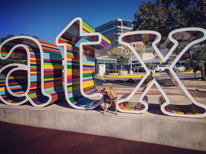 Bugsy and the atx sculpture