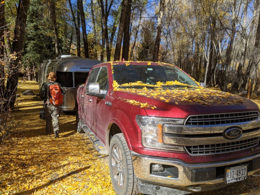 truck and airstream in Telluride covered in aspen leaves