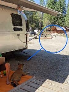 ponies in the campground at the whitefish/kalispell koa