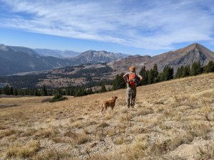 hiking in Crested Butte