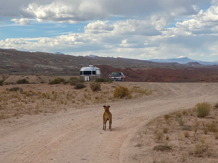 Bugsy and the Airstream at our campsite near Capitol Reef