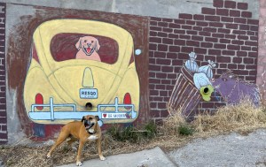 Bugsy and street art in Bisbee