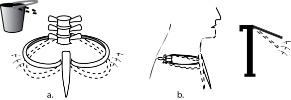 Illustration comparing the motions of ribs 8-12 to the motion of ribs 2-7. Each set has unique movements for expanding the rib cage.
