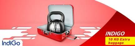 Indigo Airlines Baggage Info