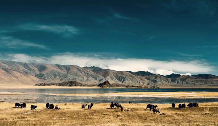 Mongolia Visa Requirements