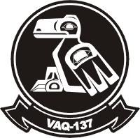 VAQ-137