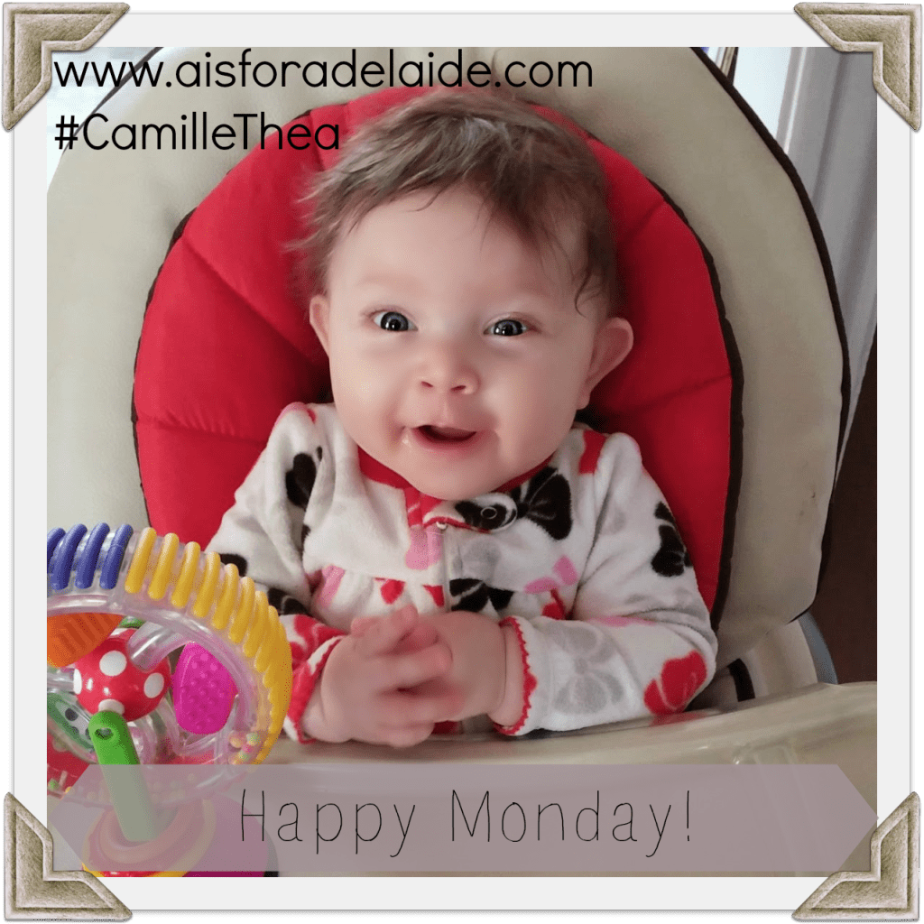 Marvelous Monday Happy Monday from Aisforadelaide and Camille Thea