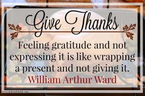 Show gratitude this #Thanksgiving. #52WeeksA4A