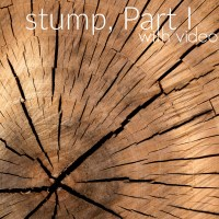 How to remove a tree stump, Part I
