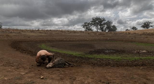 2/10/2020 – CFC: Violence and Environmental Crisis