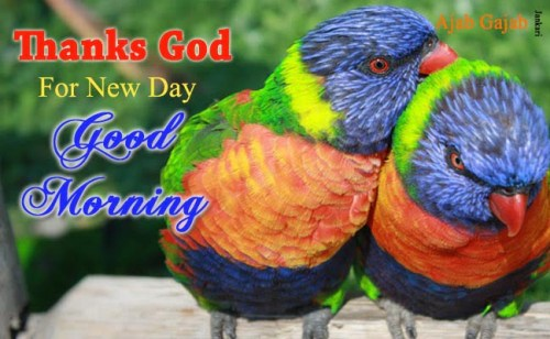 good-morning-quotes-in-hindi-with-photo