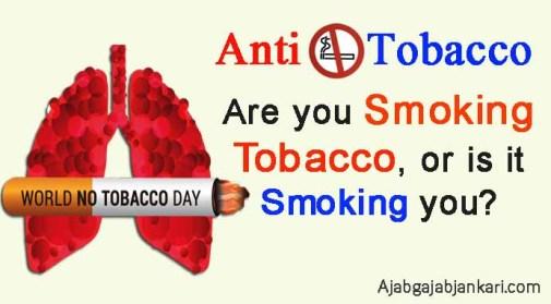 world no tobacco day slogans