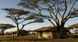 mara under canvas serengeti tanzania private holidays