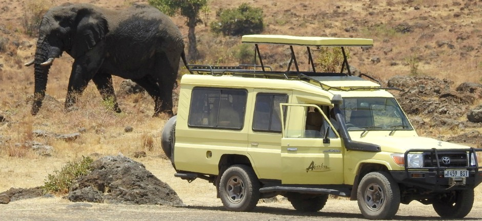5 Insider tips for a safari in Tanzania