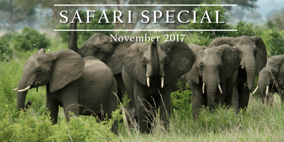Special offer: 8-days private safari Tanzania – November 2017