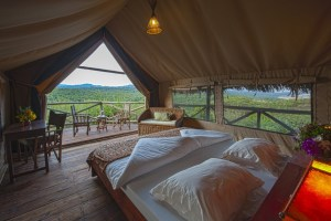 Luxury guest tent at Rhotia Valley Lodge
