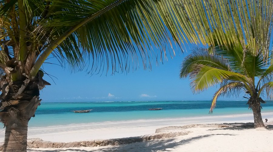 10 Things to do at Zanzibar