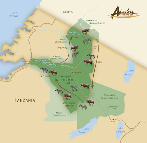 Wildebeest migration map guide Serengeti Tanzania