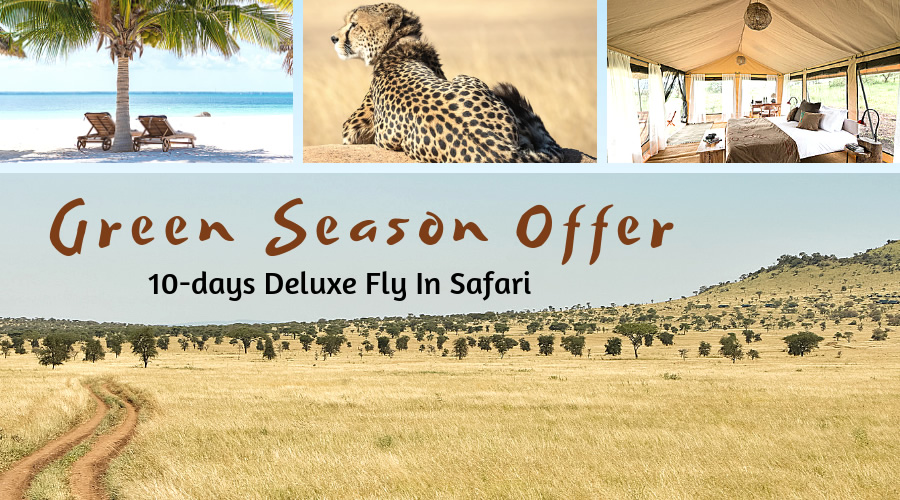 Spectacular Green Season Special Offer – Deluxe Fly-In Safari